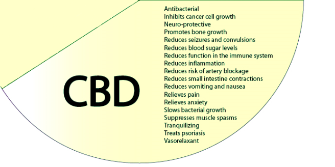 CBD picture.png